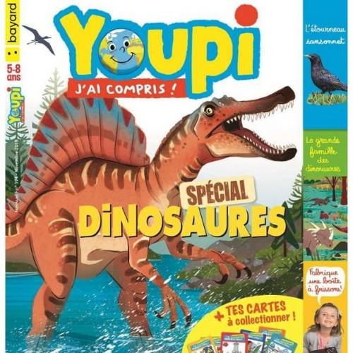 Youpi (revue) : J'ai compris ! | Ruffenach, Pascal. Directeur de publication